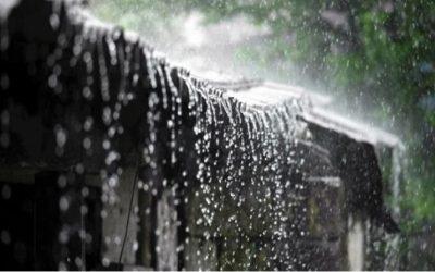 আগামী তিনদিন বৃষ্টিপাতের প্রবণতা অব্যাহত, ভারী বর্ষণ উত্তরাঞ্চলে